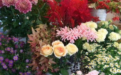紅葉した紅万作と秋バラのある店内
