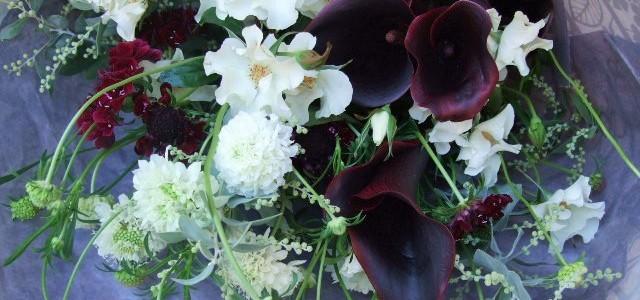 バラ・オードリーとカラー・シュワルツワルダーの花束