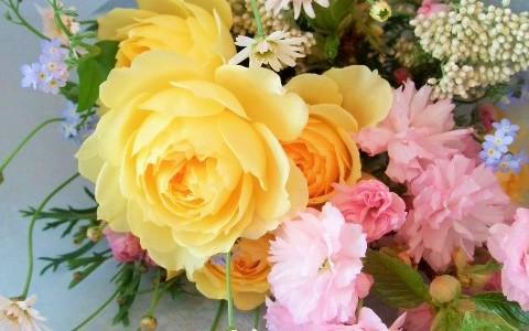 黄色いバラと八重桜の花束