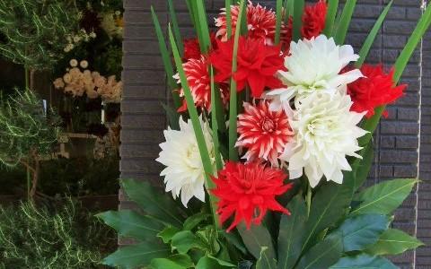 3種のダリアの花とオクラレルカのアレンジメント
