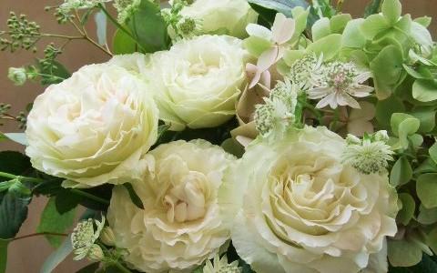 白バラとアジサイのグリーンミックスアレンジメント