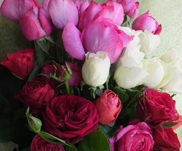 市川バラ園オリジナルローズとイブピアッチェの香りの花束