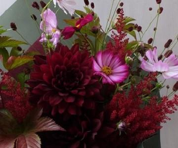 ダリア黒蝶とコスモスの花束