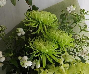 菊アナスタシアとデンファレの花束