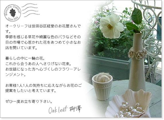 オークリーフは世田谷区経堂のお花屋さんです。