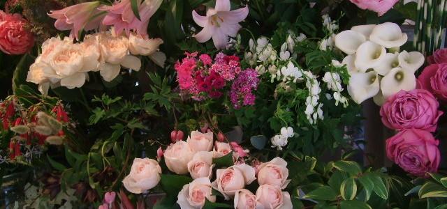 5月はバラや芍薬など、花の美しい季節です。