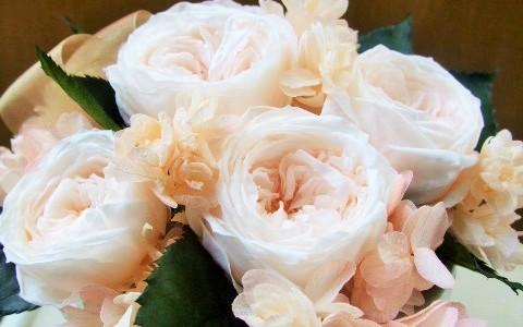 バラとアジサイのシンプルアレンジ