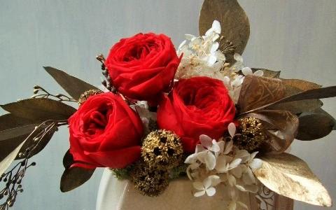 赤バラとブロンズリーフのプリザーブドフラワー