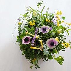 小さな球根切り花のパラレルスタイルアレンジメント