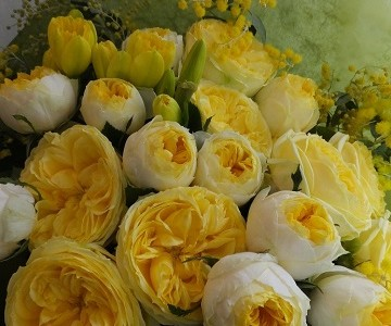黄色の薔薇とミモザの花束