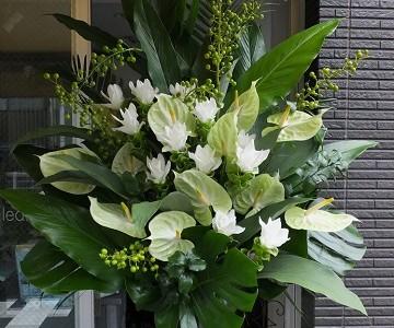 クルクマとアンスリュームのスタンド花