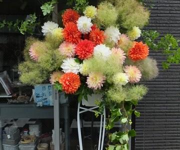 ダリアとスモークツリーのスタンド花
