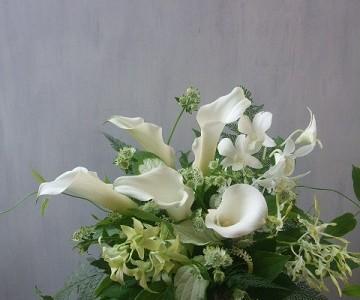 白いカラーと蘭のシンプルアレンジメント