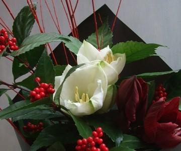 紅白のアマリリスと千両紅の花束